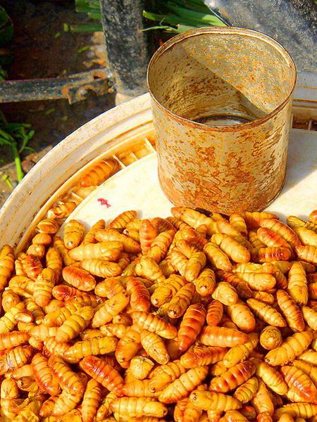 """10 """"nỗi kinh hoàng"""" của khách Tây về ẩm thực Việt Nam Nhong"""