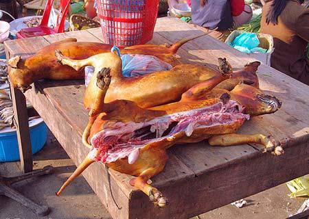 """10 """"nỗi kinh hoàng"""" của khách Tây về ẩm thực Việt Nam Thitcho1"""